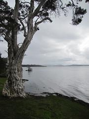 Near Pelican Point - Bibbulmun Track, Nullaki Peninsula, Western Australia