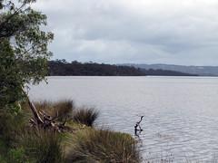 Towards Pelican Point - Bibbulmun Track, Nullaki Peninsula, Western Australia