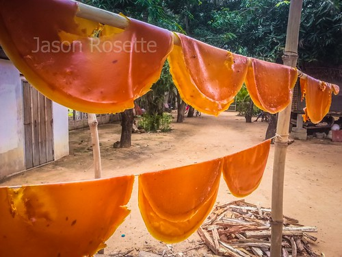 Medium View of Mango Leather Drying on Bamboo Poles in Siem Reap
