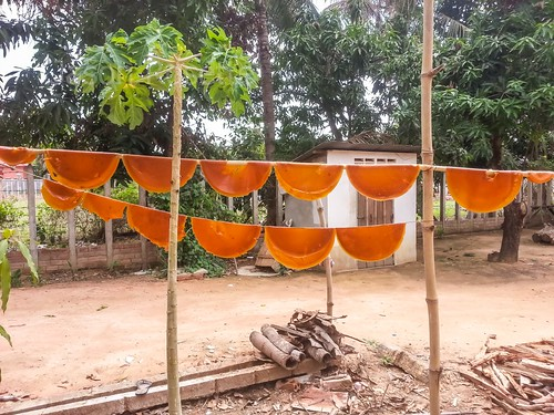 Wide View of Mango Leather Drying on Bamboo Poles in Siem Reap