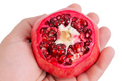 Fresh Pomegranate in the hand