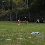 1. RO-LM HSV Pfote drauf 14.09.2019