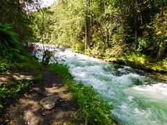 Russian River & falls, Alaska