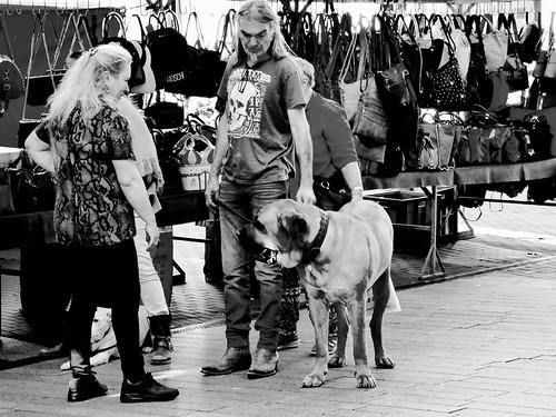 Op de Bossche markt .