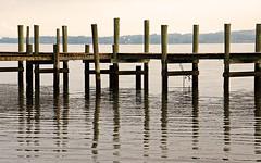 sandgates dock reflections