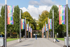 """Allee mit Regenbogenflaggen vor dem Rhein-Energie Fußballstadion in Köln: gemeinsam für Vielfalt und LGBTQ-Rechte beim """"Lebe wie du bist"""" Aktionstag"""