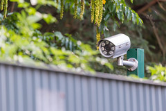 Fence surveillance camera