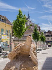 La tortue du musée - Saint-Florentin