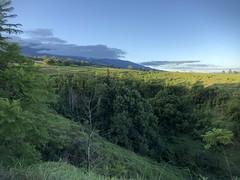 Haleakala Highway near Kula