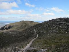 Trail through Montane - Bluff Knoll, Stirling Ranges, Western Australia