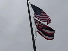 USA & Hawaiian flags