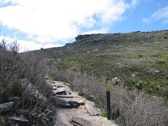 Clifftop Track - Bluff Knoll, Stirling Ranges, Western Australia