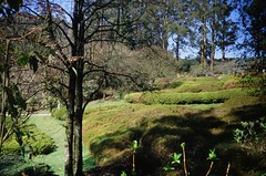 National Rhododendron Gardens (photo 4)