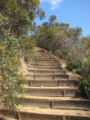 Mid-Section Track Stairs - Bluff Knoll, Stirling Ranges, Western Australia