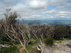 Clifftop Views - Bluff Knoll, Stirling Ranges, Western Australia