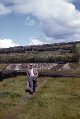 albion fields