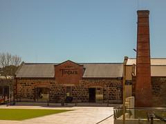 Tintara Winery