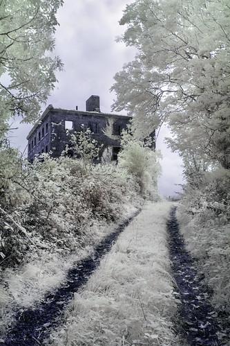 The haunted path [IR]