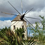 Spanish Windmill by Patricia Reid