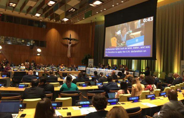 48809747781 f1bd45eb53 z - Entidade defende na ONU a agricultura camponesa como solução climática