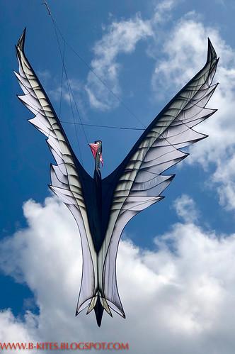 B kites-0055-2