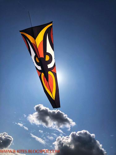 B kites-0278-2