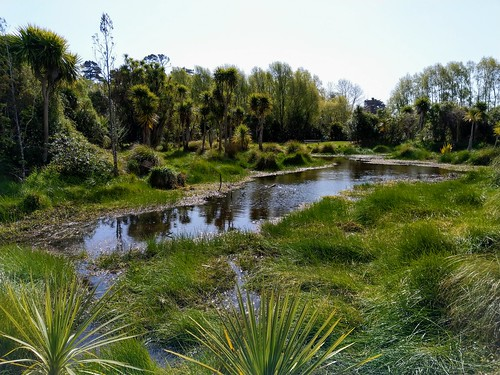 Walking by the Waikanae River