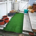 turned the recyling/junk space into a green space