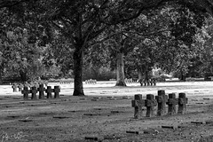 La Cambe German War Cemetery - Photo of Vouilly