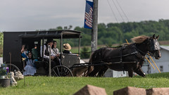 Intentional Lifestyle of the Amish ~ Horse and Buggy Along Backroad ~ Jasper, Steuben, New York