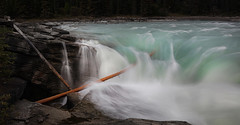 #6434 Athabasca Falls