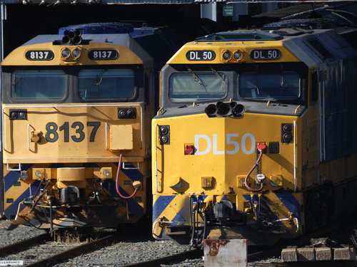 20190722_0056 locomotives 8137 and DL50 at Parkes