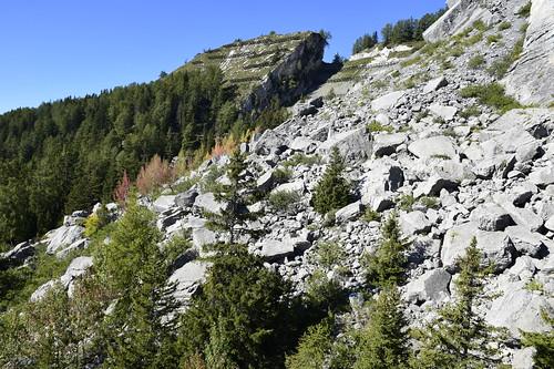 _DSC0204 Sous La Brune/Anzère