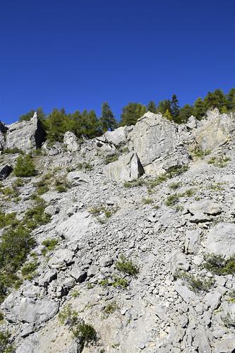_DSC0203  Sous La Brune/Anzère