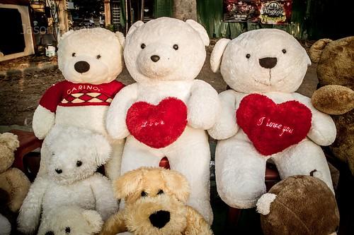Group of Teddy Bears in Love by the Roadside