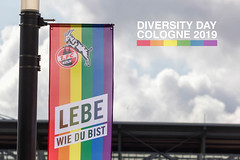 German soccer team 1. FC Köln hoist rainbow flag for Diversity Day Cologne 2019