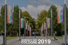 """Straße vor dem Fußballstadion in Köln gesäumt mit Regenbogenflaggen, für Solidarität mit der LGBTQ-Community & dem Text """"Diversity Day Cologne 2019"""""""