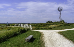 Levy Preserve Windmill