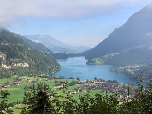 Lake Brienz from Above