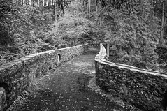Bridge Over Upper Bruar Falls