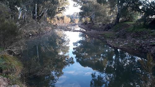 20190801_075749 Creek in early morning light