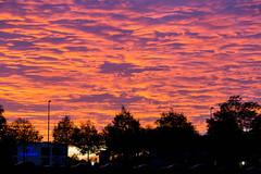 Golden hour in München - Sonnenuntergang färbt den Himmel orange und lila