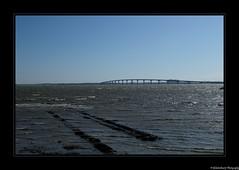 L'île de Ré- Charente Maritime- France