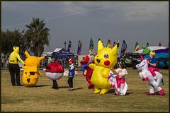 Clontarf Kite Fest-02=