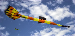 Clontarf Kite Fest-03=