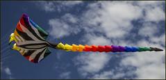 Clontarf Kite Fest-04=