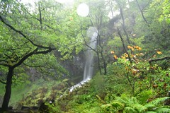 Melin Court Water Fall