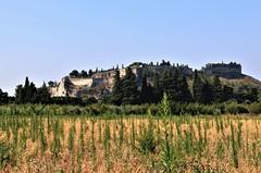Vue sur le Mont Andaon depuis la plaine de l'Abbaye à Villeneuve lez Avignon