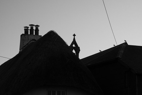 chimneys, steeples and birds