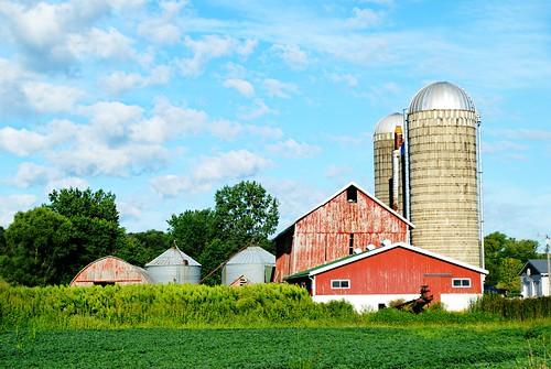 Farm in Argyle, Wisconsin
